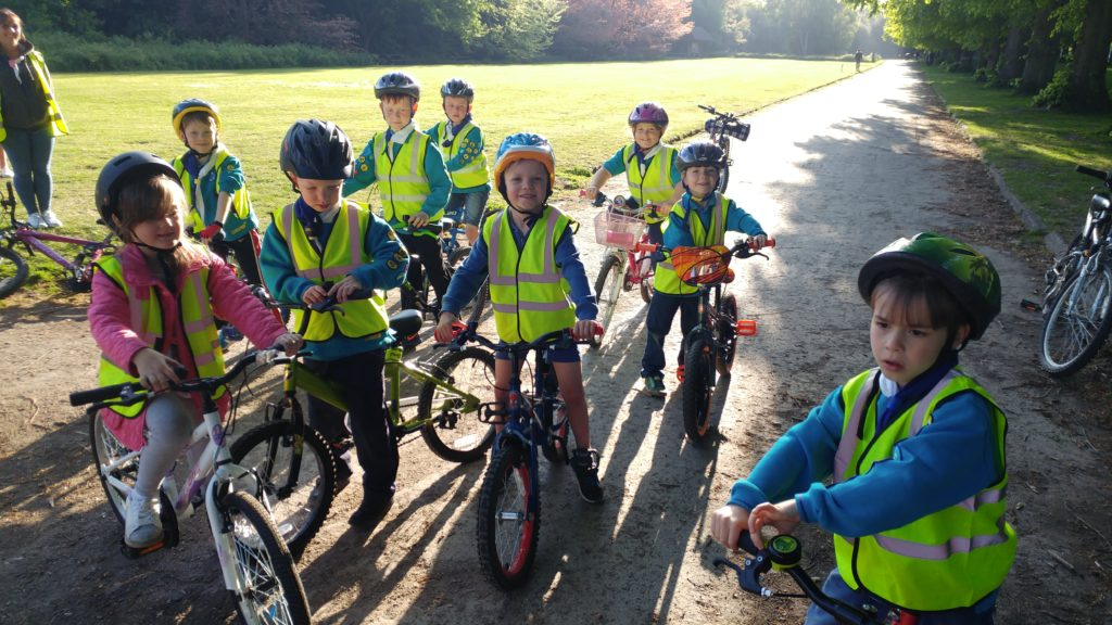 beavers cycling